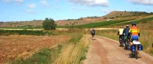 camino-frances-bike-3-1