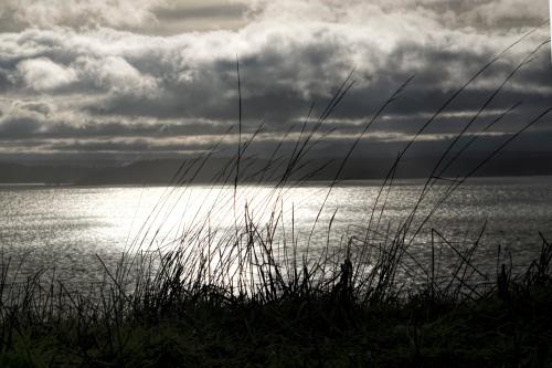 160112-Ebey Island-10-final